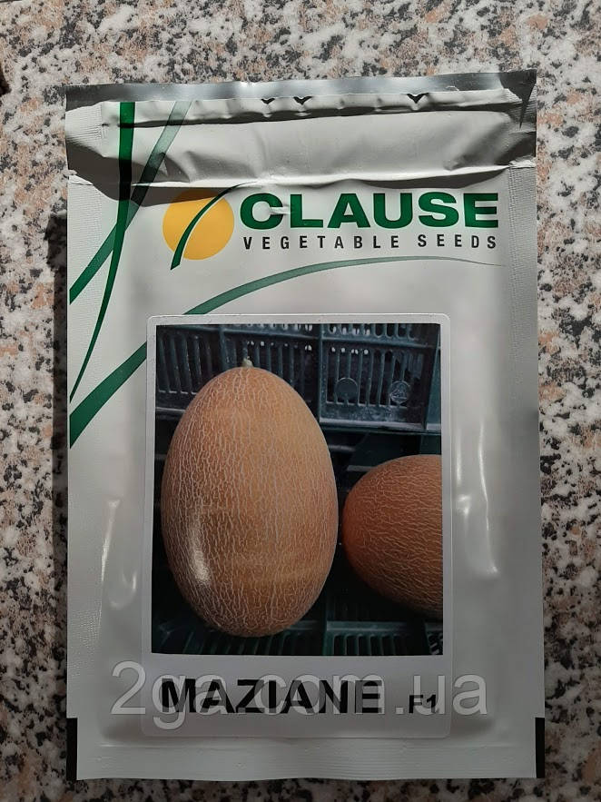 МАЗИН F1 (МАФ 35 F1) / MAZIN F1 (MAF 35 F1) - Дыня, Clause 1000 семян