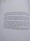 Український лісостеп Український лісостеп М. Чижов, фото 3
