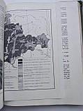 Український лісостеп Український лісостеп М. Чижов, фото 7