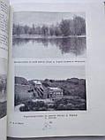 Український лісостеп Український лісостеп М. Чижов, фото 5