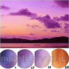 Пигмент Shine Cosmetics #1, фото 2