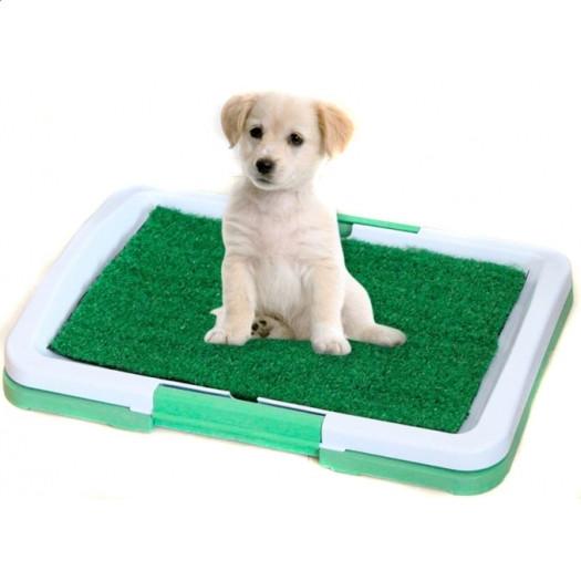 Туалет для собак и щенков с травкой 45*30*4 см