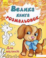 Велика книга розмальовок. Для малюків (744933)