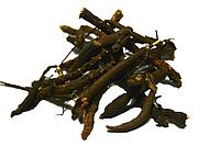Лапчатка белая (Пятипал) - корень 100 грамм