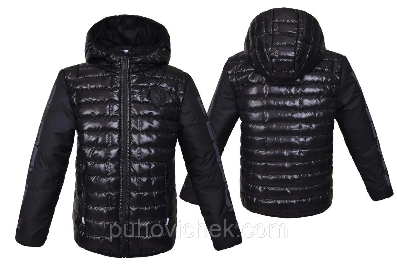 Модные куртки детские для мальчиков демисезонные