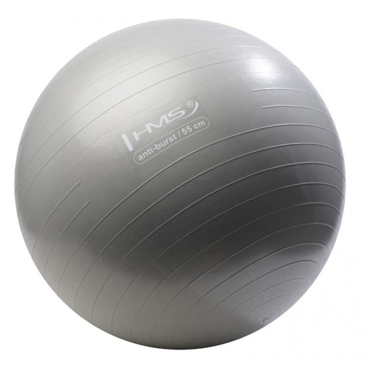 Мяч для фитнеса, фитбол Hms YB02 55 см Anti-Burst Silver - 227360