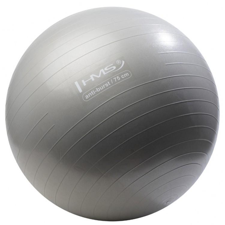 Мяч для фитнеса, фитбол Hms YB02 75 см Anti-Burst Silver - 227423
