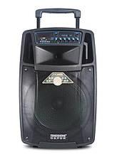 Акустическая система Temeisheng SL10-01 с 2-мя микрофонами Bluetooth