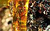 Живица кедровая 25%, 100 мл (терп.бальзам кукурузное масло)