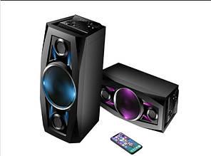 Акустика аккумуляторная с беспроводными микрофонами TMS-801 / 100W (USB/FM/Bluetooth)