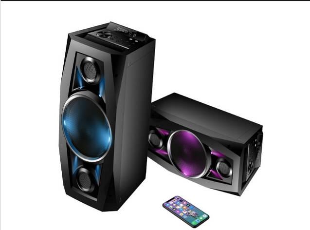 Акустика аккумуляторная с беспроводными микрофонами TMS-801 / 100W (USB/FM/Bluetooth), фото 2