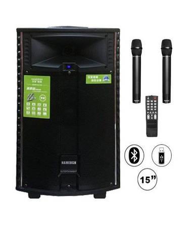 Автономная акустическая система TMG QX-1521  (BT+2MIC+USB+SD), фото 2