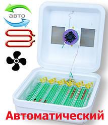 Инкубатор автоматический Рябушка Турбо 48