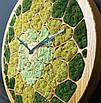 """Часы настенные """"СОТЫ"""" деревянные с мхом диаметр 40 см, фото 2"""