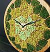 """Часы настенные """"СОТЫ"""" деревянные с мхом диаметр 40 см, фото 3"""