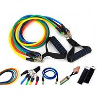Эспандер для фитнеса Power Bands многофункциональный 5 жгутов (5 жг. с различ. жестк. силикон, l-120см)