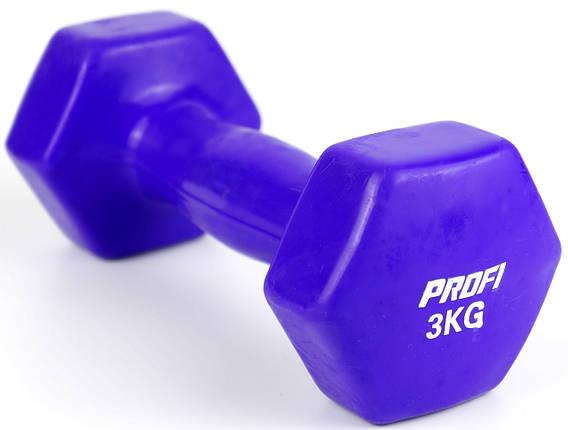 Гантель 3 кг Profi с виниловым покрытием (Фиолетовая), фото 2