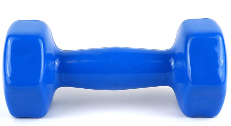 Гантель 3 кг Profi с виниловым покрытием (Синий), фото 2