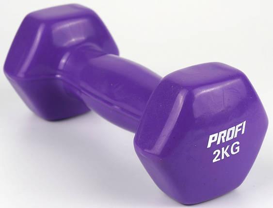 Гантель Profi 2 кг с виниловым покрытием (Фиолетовый), фото 2