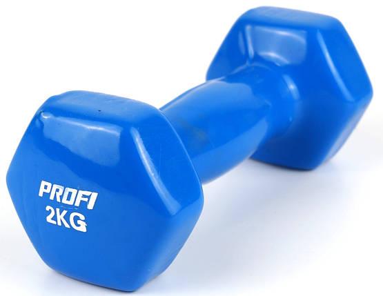Гантель Profi 2 кг с виниловым покрытием (Синий), фото 2