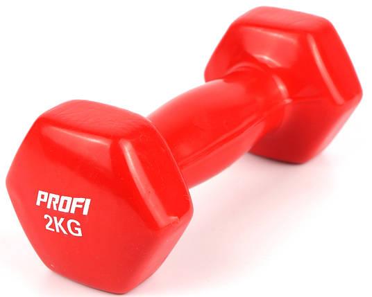 Гантель Profi 2 кг. с виниловым покрытием (Красный) 1шт., фото 2