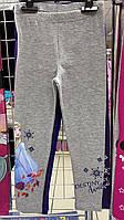 Лосины для девочек оптом, размеры 3-8 лет, Disney, арт. 02050.