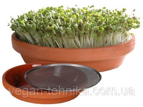 Тарелка для проращивания кресс-салатов Eschenfelder
