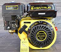 Двигатель бензиновый Кентавр (7.5 л.с) вал 19 мм шпонка., фото 1