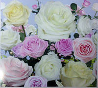 Фотообои, розы, цветы, большие,  ПРЕСТИЖ №15 294Х272
