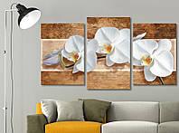 Модульная картина Декор Карпаты Vip Collection 100х53 см (VIP-M3-453)
