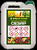 СЕЗАР Биологический инсектоакарицид от вредителей 5л