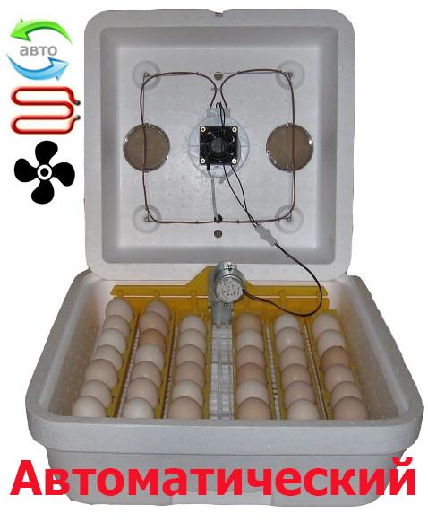 Инкубатор автоматический Веселое семейство 42