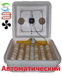 Інкубатор автоматичний Веселе сімейство 42