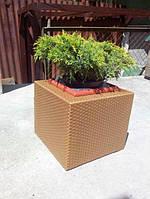 """Техноротанг, искуственый ротанг для изготовления садовой мебели золото 8*1,3мм """"АУРА"""" бухтами по 5 кг"""