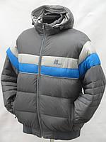 Купить зимнюю спортивную куртку