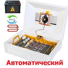 Инкубатор автоматический Теплуша ИБ 72 ТА влагометр + 12 вольтовое питание
