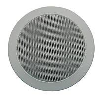 Гучномовець для підвісного птолка 6АС100ППм
