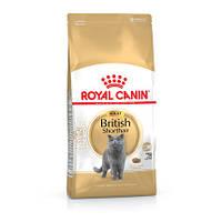 Сухой корм Royal Canin British Shorthair Adult для котов породы британская короткошерстная от 12 месяцев 4кг