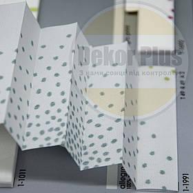 Штори плісе Аllegro print (2 варіанта кольору)