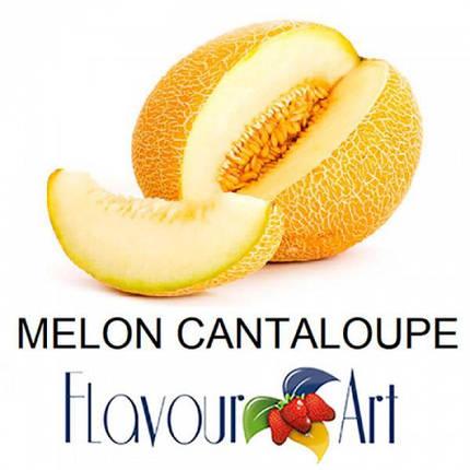 Ароматизатор FlavourArt Cantaloup Melone (Медовая дыня), фото 2