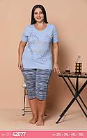 Батальные пижамы футболка с бриджами, фото 1