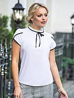 (S, M, L, XL) Молодіжна біла блузка з кортким рукавом