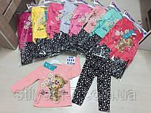 Костюм для девочки на 2-5 лет малинового, серого, бирюза, желтого, персикового, розового цвета мишка оптом