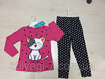Костюм для девочки на 5-8 лет малинового, серого, бирюза, желтого, персикового, розового цвета кошка оптом