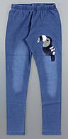 Лосини з імітацією джинси для дівчаток Sincere оптом, 134-164 pp. Артикул: LL2628, фото 1