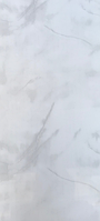 "Панель пластиковая Оникс Серый  ON-01  ""Panelit""  6,00м*0,25м*8мм"
