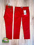 Красные брюки Lacoste для мальчиков, фото 2