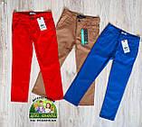 Красные брюки Lacoste для мальчиков, фото 3