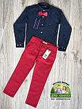 Красные брюки Lacoste для мальчиков, фото 5