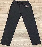 Чоловічі спортивні штани тм FAZO-R